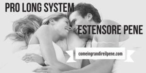 Pro-Long-System